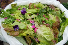 Salad with herbs and flowers