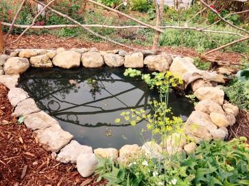 Garden pond