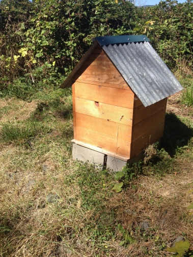 Perone bee hive 1