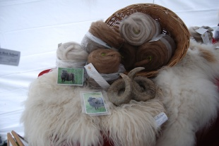Natural Icelandic wool roving